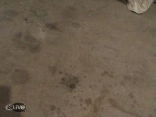 (holandés) En El Garaje Geneukt