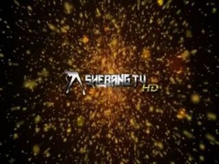 Shebang.tv Armonía Y Antonio Negro