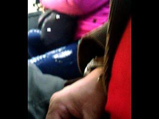 Flash De Gallo En El Bus 1