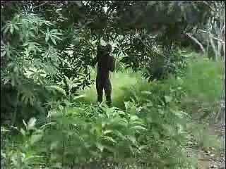 Verdadero Aficionado Africano Mierda En La Parte 2 Del árbol