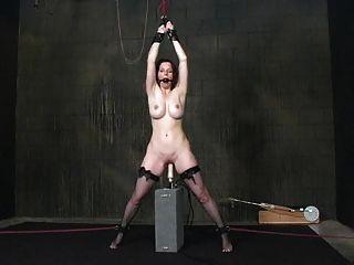Esclavitud Y Máquinas De Mierda (aguardiente) 15