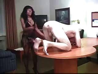 Chica Negra Hace Niño Blanco Su Perra