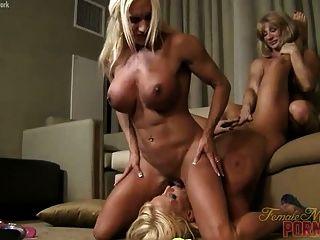 Alura Jenson, Cámaras Ashlee Y Lesbianas Del Músculo Wildkat